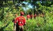 Bombeiros mirins enfrentam teste na selva para testar conhecimentos de sobrevivência