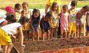 Projeto incentiva alimentação saudável de crianças na creche Santo André
