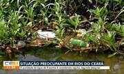 ONG pesquisa rios do Ceará e situação é preocupante