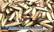 Procura por peixes aumenta em Joinville