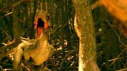 Cena 14/10 - Dinossauros matam John e Virgínia