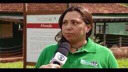 IEF realiza encontro sobre javali asselvajado em Uberlândia