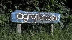 Propriedade de Barra do Turvo é modelo de agrofloresta