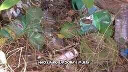 Mais de 100 moradores de bairro em Cuiabá recebem multa por não limpar quintais