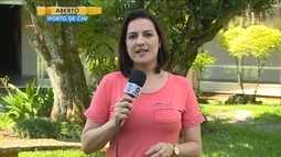 Cidades catarinenses promovem Dia D de combate ao Aedes aegypti
