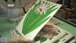 Saiba mais sobre a ilustração botânica