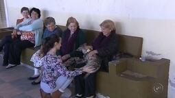 Projeto leva cães para visitar idosos em asilo de Marília