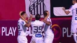 Os gols de Vitória 2 x 3 Santos pela 16ª rodada do Brasileirão 2016