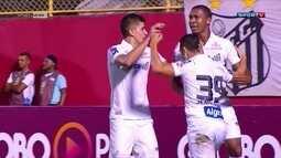 Santos bate o Vitória e Internacional empata com a Ponte Preta pelo Brasileirão
