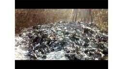 Caso de remédios e receitas queimados em área ambiental de Búzios é investigado