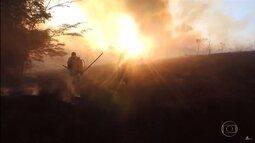Bombeiros e brigadistas voluntários se auxiliam no combate a incêndios em Minas