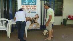 Campanha de vacinação contra a raiva segue em Araguari