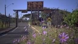 Acompanhe as novidades do zoológico de Bauru