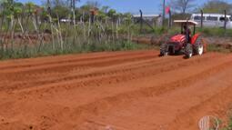 Agricultores de Suzano participam do Dia de Negócios