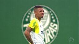 Palmeiras faz os últimos preparos para conquistar o título brasileiro contra a Chapecoense