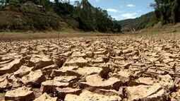 A força do agronegócio: veja os impactos da seca no agronegócio capixaba em 2016