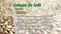 Cotação do café: conilon está em baixa no ES