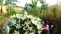 Devoção à Nossa Senhora da Conceição é tradição em Vicência
