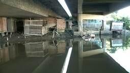 Prefeitura de Itajaí retira famílias que viviam embaixo de ponte na BR-101