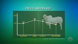 A crise do país trouxe reflexos ao mercado da arroba do boi gordo