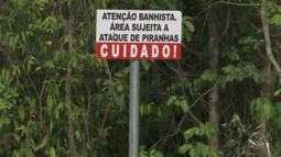 Defesa Civil monitora praias que tiveram ataques de piranha em Boa Vista