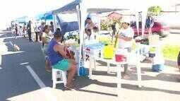 Feira de frutas e verduras é realizada no conjunto Pérolas, em Boa Vista
