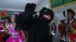 Bloco do Urso Cangaçá é tradição no carnaval de Pernambuco