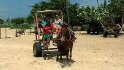 Turistas encontram sossego no carnaval de Canoa Quebrada e Jericoacoara