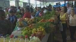 Período de chuvas têm prejudicado plantões e preço de frutas e legumes disparam no AP