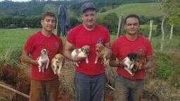 Homens do Corpo de Bombeiros de Poços de Caldas (MG) resgatam filhos de cachorros