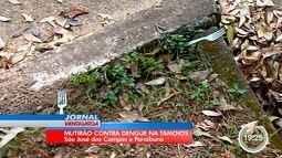 Mutirão recolheu lixo e possíveis criadouros da dengue na Tamoios