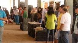 Preço de hortaliças sofre variação nas centrais de atendimento e preocupa produtores