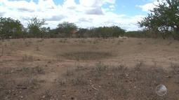 Sobe para 225 o número de cidades em situação de emergência por causa na seca na Bahia
