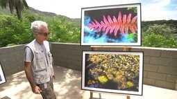 Parque do Rola Moça é registrado pelas lentes do fotógrafo Gualter Naves