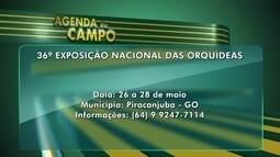 Veja os principais eventos do agronegócio em Goiás