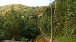 Secretaria de Saúde do RJ confirma 1ª morte por febre amarela em macaco em Petrópolis