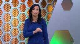 Confira a íntegra do Globo Esporte RS desta sexta-feira (26)