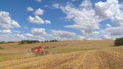 Gisele Loeblein destaca o que foi importante na semana do agronegócio