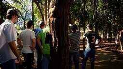 Tecnologia facilita acesso de informações ao visitantes do Museu da Árvore, em Uberaba