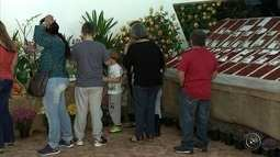 Festa do Morango reúne doces tradicionais e comida típica italiana em Jarinu