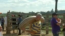 'Leilão Caipira' alia tradição e devoção a santos em Mineiros do Tietê