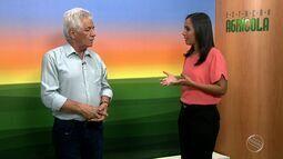 Meteorologista fala sobre período de chuvas em Sergipe