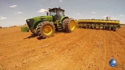 Bahia contribui positivamente na safra agrícola nacional do mês de junho