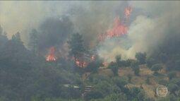 Em Portugal, 37 pessoas ficam feridas em incêndio