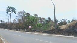 Incêndio destrói área de preservação ambiental em Ariquemes