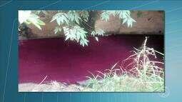 Mancha vermelha invade rio Paraíba do Sul, em Três Rios
