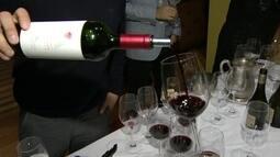Festival de vinho reúne mais de mil marcas de várias partes do mundo