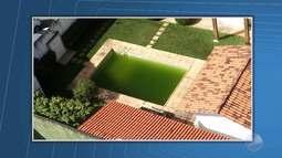 Telespectador envia imagens de possível foco do mosquito Aedes Aegypti em Salvador