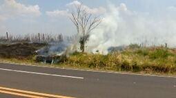 Grande número de incêndios marca a reta final do inverno no Oeste Paulista