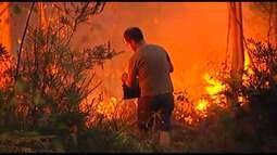 Moradores ajudam a combater focos de incêndio em Portugal